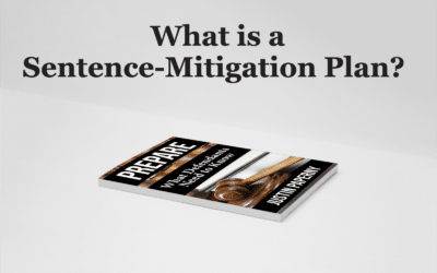 What is a Sentence-Mitigation Plan? (Chapter 6)