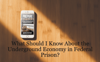 What Should I Know About the Underground Economy? (Chapter 22)